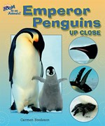 <h2>Emperor Penguins Up Close</h2>