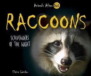 Picture of Raccoons: Scavengers of the Night