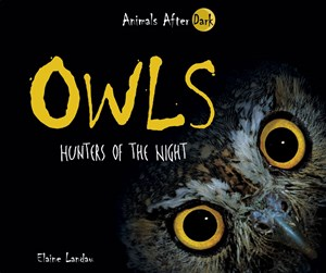 Picture of Owls: Hunters of the Night