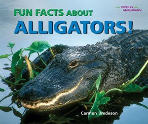 Picture of Fun Facts About Alligators!