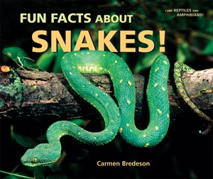 Picture of Fun Facts About Snakes!