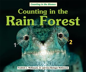 Picture of Counting in the Rain Forest