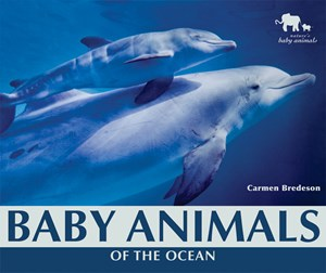Picture of Baby Animals of the Ocean