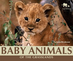 Picture of Baby Animals of the Grasslands