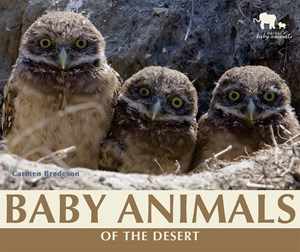 Picture of Baby Animals of the Desert