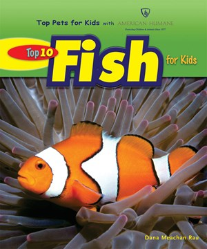 Top 10 fish for kids for Best fish for kids