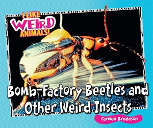 Picture of Bomb-Factory Beetles and Other Weird Insects