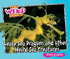 Picture of Leafy Sea Dragons and Other Weird Sea Creatures