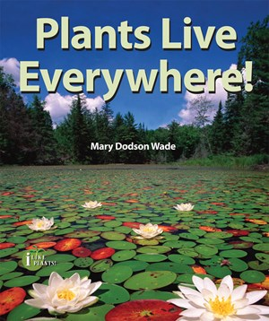 Picture of Plants Live Everywhere!