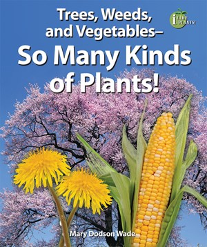 Picture of Trees, Weeds, and Vegetables—So Many Kinds of Plants!