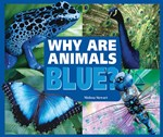 "<h2><a href=""http://www.enslow.com/books/Why_Are_Animals_Blue/2792"">Why Are Animals Blue?</a></h2>"