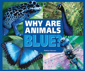 Picture of Why Are Animals Blue?