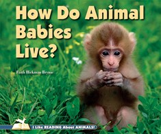 How Do Animal Babies Live?