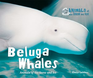 Picture of Beluga Whales: Animals of the Snow and Ice