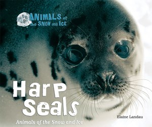 Picture of Harp Seals: Animals of the Snow and Ice