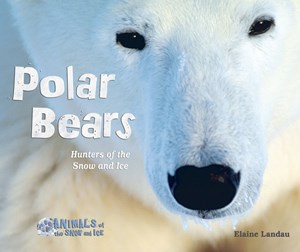 Picture of Polar Bears: Hunters of the Snow and Ice
