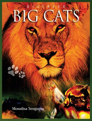 Picture of Discover Big Cats