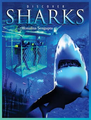 Picture of Discover Sharks
