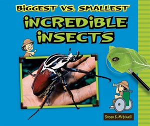 Picture of Biggest vs. Smallest Incredible Insects