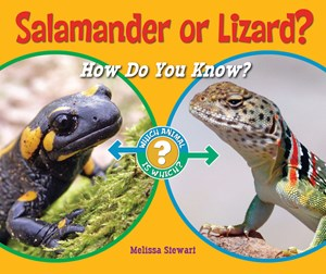 Picture of Salamander or Lizard?: How Do You Know?