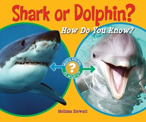 Picture of Shark or Dolphin?: How Do You Know?