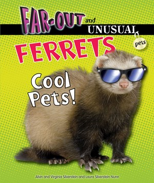 Picture of Ferrets: Cool Pets!