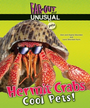 Picture of Hermit Crabs: Cool Pets!