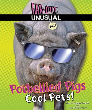 Picture of Potbellied Pigs: Cool Pets!