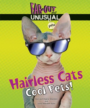 Picture of Hairless Cats: Cool Pets!