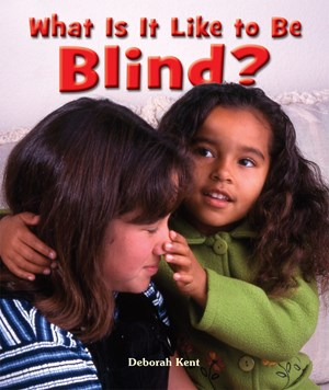 Picture of What Is It Like to Be Blind?