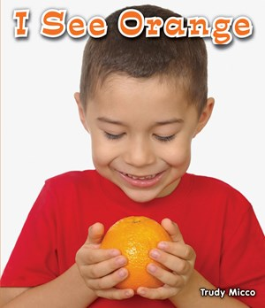 Picture of I See Orange