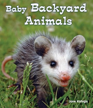 Picture of Baby Backyard Animals