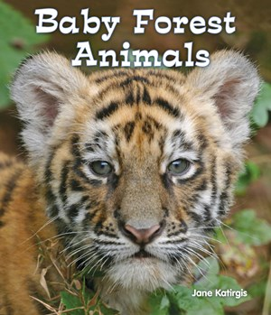 Picture of Baby Forest Animals
