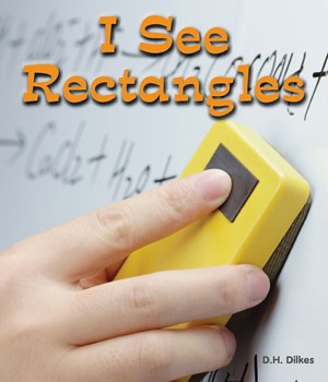 Picture of I See Rectangles