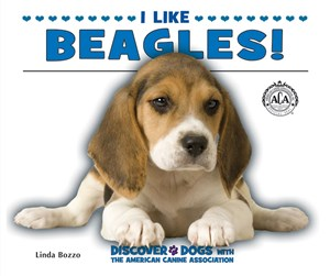 Picture of I Like Beagles!