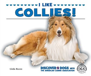 Picture of I Like Collies!