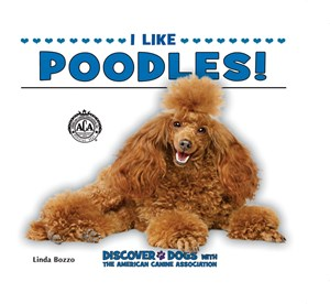 Picture of I Like Poodles!