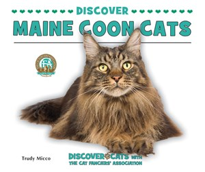 Picture of Discover Maine Coon Cats