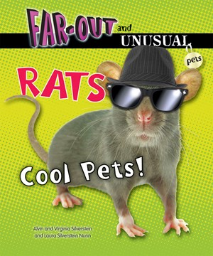 Picture of Rats: Cool Pets!