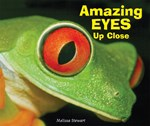 "<h2><a href=""http://www.enslow.com/books/Amazing_Eyes_Up_Close/544"">Amazing Eyes Up Close</a></h2>"