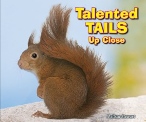 Picture of Talented Tails Up Close