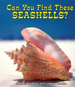 Picture of Can You Find These Seashells?