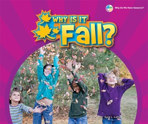 Picture of Why Is It Fall?