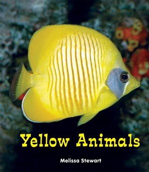 Picture of Yellow Animals