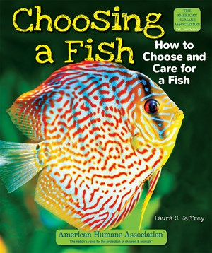 Picture of Choosing a Fish: How to Choose and Care for a Fish
