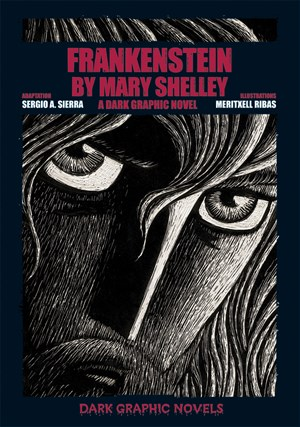 Picture of Frankenstein by Mary Shelley: A Dark Graphic Novel