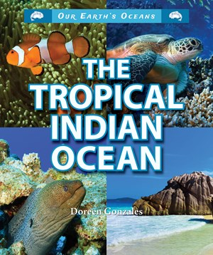 Picture of The Tropical Indian Ocean