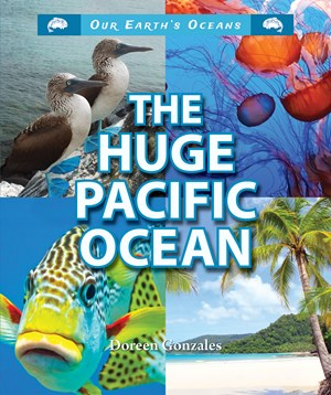 Picture of The Huge Pacific Ocean