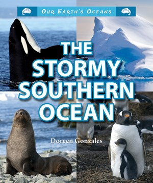 Picture of The Stormy Southern Ocean