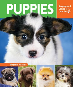 Picture of Puppies: Keeping and Caring for Your Pet